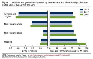 National Fertility Chart 2013