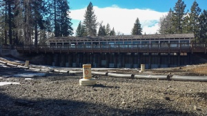 Figure 13: The Truckee River Upriver from the Tahoe City Dam. Source: Siig, 4/9/15.