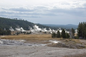 Upper Geyser Basin (North Fork Fire of 1988), Yellowstone National Park. Photo: John May.